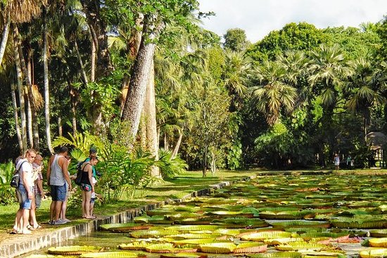 Mauritius In 3 Days: North, South and...