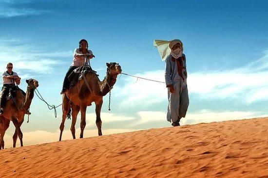 从马拉喀什到非斯的3日沙漠之旅