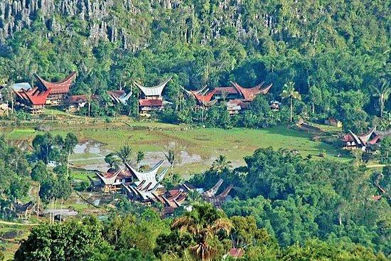 Toraja en 4 jours