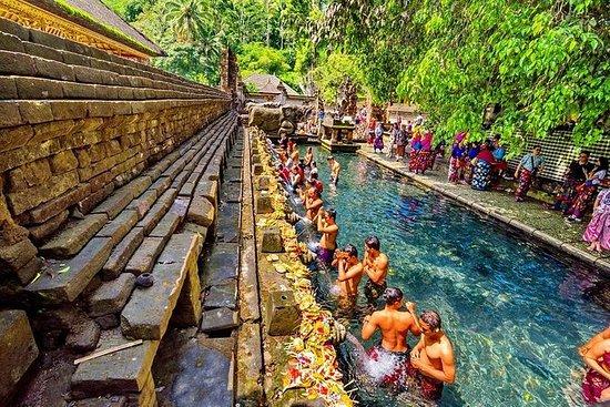 Bali Subak UNESCO World Heritage Tour