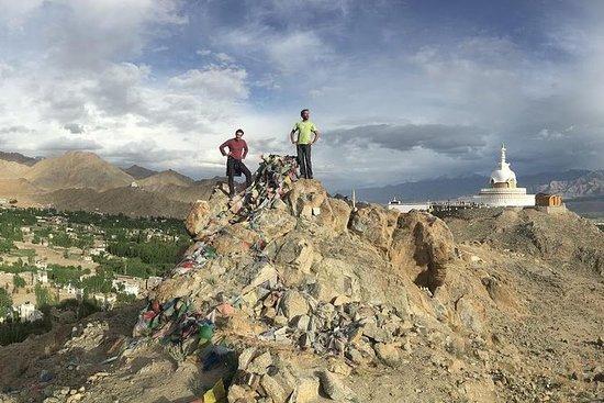 Ladakh Highlights tour