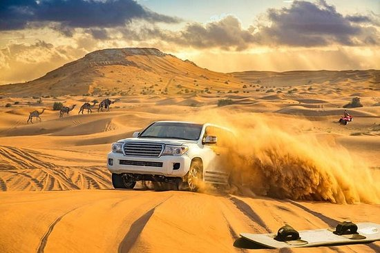Dubai Desert Safari, Camel Ride, Fire...