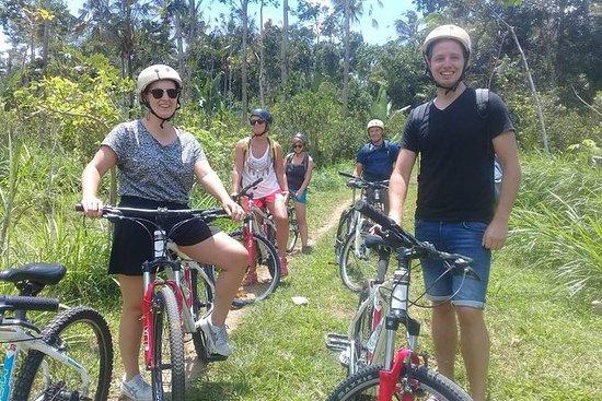 Bailando Tours Bali - Ubud Sykkeltur