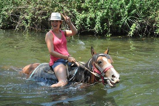 Marmaris Horse Safari, Pick up from...