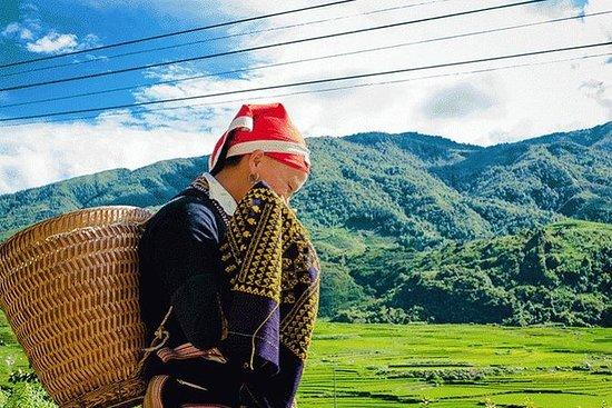 Sapa-Trecking til Lao Chai-Ta Van...