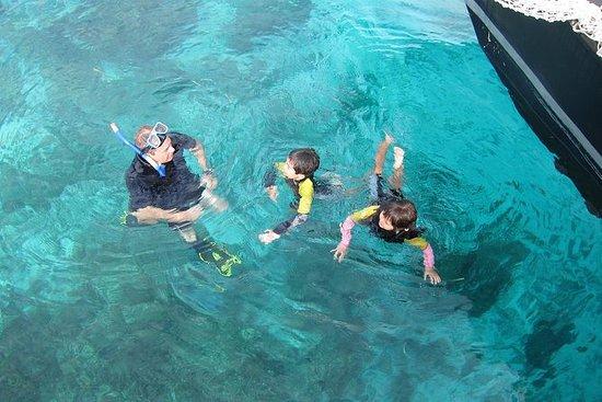 Boat Snorkeling Tour
