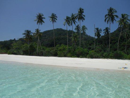 Pulau Redang, Malaysia: Solo le nostre pinne...