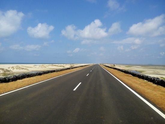 Best roads. Enroute to Arichalmunai, Dhanushkodi.