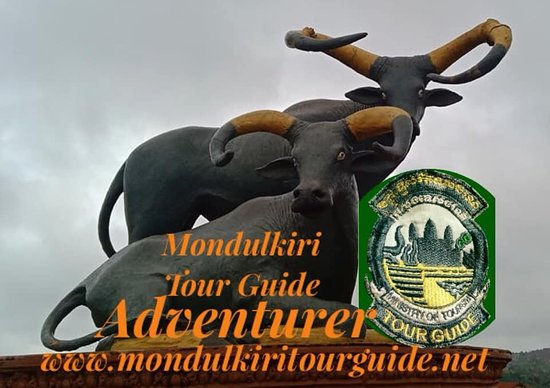 Sen Monorom, กัมพูชา: logo Mondulkiri tour Guide