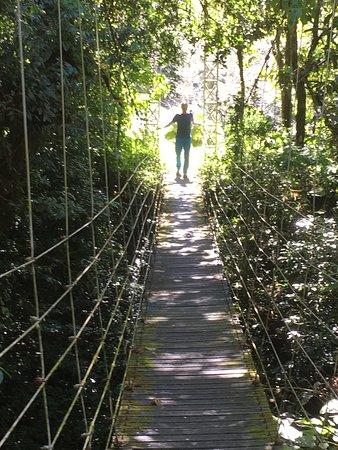 Quesada, Costa Rica: Im Juan Castro Park