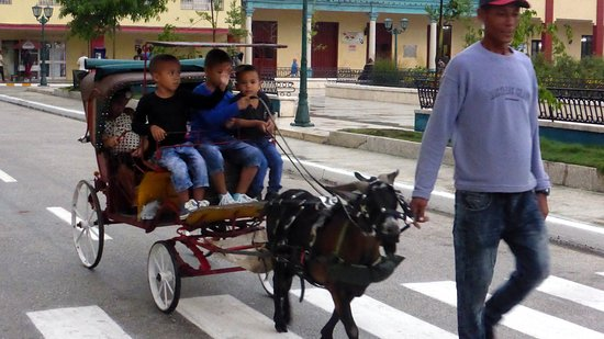 Bayamo, Cuba: Yes, that is a goat you see pulling the carriage!