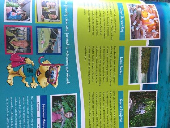 Excursión de un día a Green Island desde Cairns: Activities