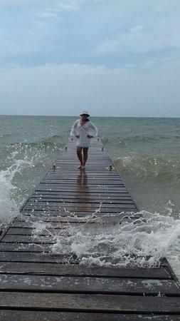 Cartagena, Kolumbien: FULL DAY ISLAS DEL ROSARIO.   Paseo de un día por el Archipiélago Corales del Rosario, en lanchas rápidas,  asistencia de guía turístico, recorrido panorámico por 45 minutos aproximadamente, visita al Oceanario San Martin de Pajarales, donde podrán admirar las variedades de especies marinas y el show de los delfines.  Salida: 08:00 Horas – Regreso; 15:00 Horas