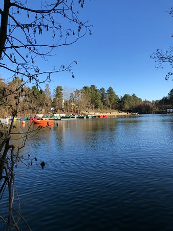 Center Parcs Elveden Forest: A view of the Beach / Lake