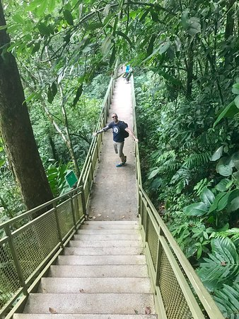 The stairs and pathway at La Fortuna Waterfall