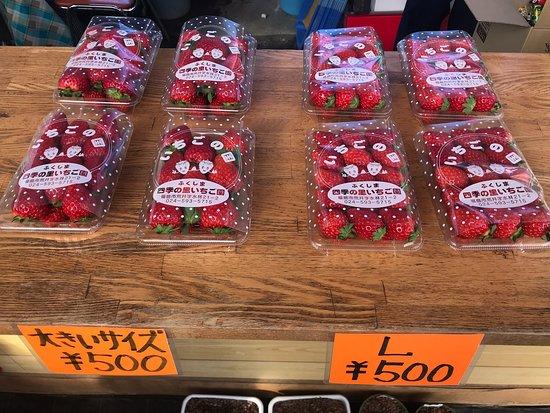 Shiki no Sato  Strawberry Farm