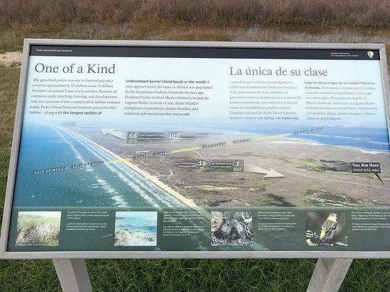 Padre Island National Seashore 사진
