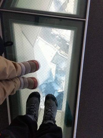 Goryokaku Tower: ガラス張り