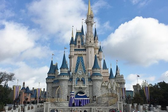 The 5 Best United States Disney Parks Activities With Photos