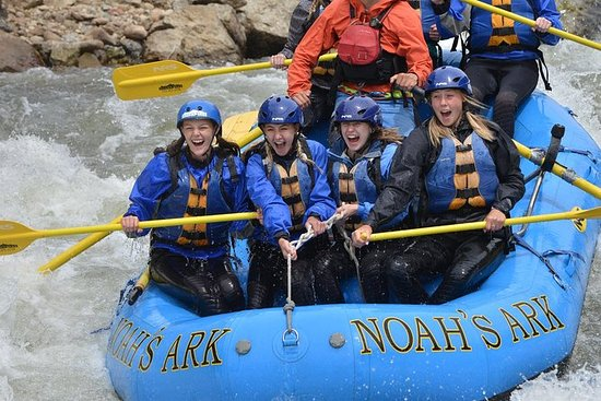 Half-Day Whitewater Rafting in Browns...