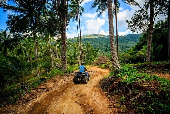 Excursion en quad à Samui