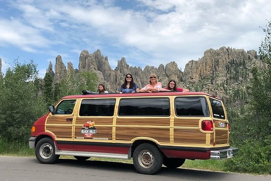 Custer Park Buffalo Safari Van Tour