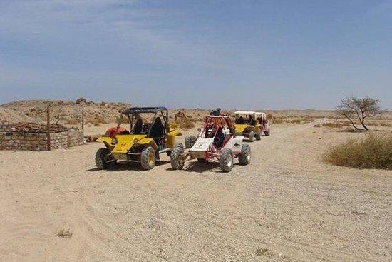 From El Gouna: Sahara Dune Buggy...