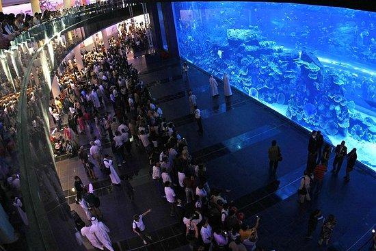Dubai Aquarium och Underwater Zoo ...