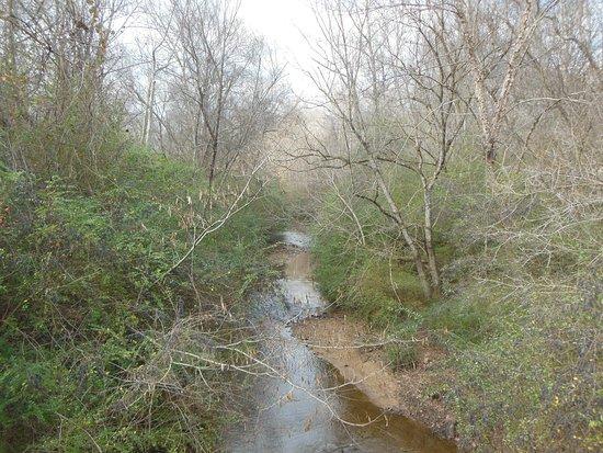 Mableton, GA: Nickajack Creek that runs through Heritage Park