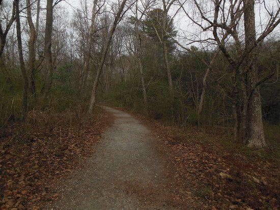 Mableton, GA: Another portion of the trail off the raised board part through Heritage Park.