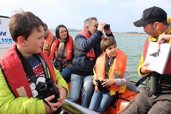 Ecoturismo Bahia De Santander: Ruta en barco en la ria de Cubas. Bahia de Santander. Acompañados por un guia interprete del patrimonio natural y ornitologo