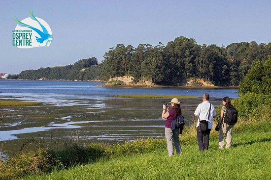 Ecoturismo Bahia De Santander: Participantes en la ruta a pie de la Mies al Pico, se interpreta la campiña atlantica y la marisma del Conde. territorio del Aguila pescadora en la Bahia de Santander