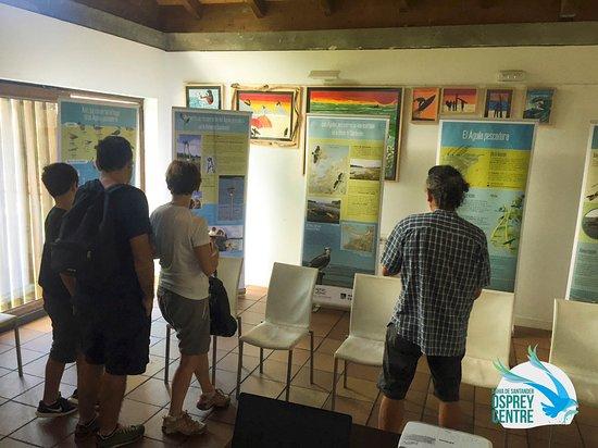 Ecoturismo Bahia De Santander: Osprey Centre. Centro de Visitantes Aguila pescadora en la Bahia de Santander