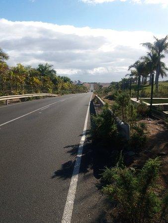 Saturday e bike tour