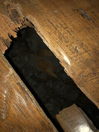 broken floorboard in room, see review for details on injury sustained