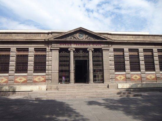 Museo Silva Federico