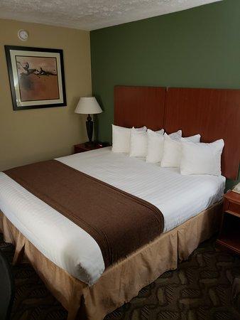 Morrow, GA: Best Western Southlake Inn