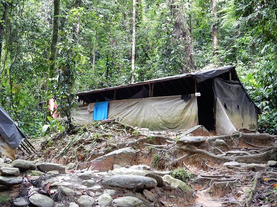 Bukit Lawang, Indonesia: One of the camp sites
