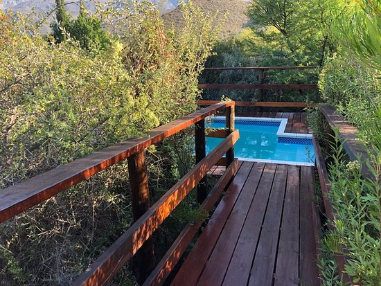 Ladismith, Sudáfrica: Private plunge pool right outside my room