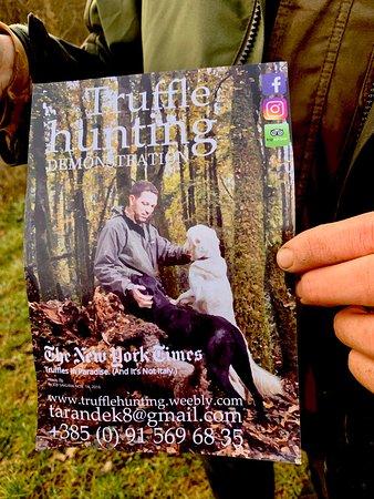 Truffle Hunting: How to contact Nicola