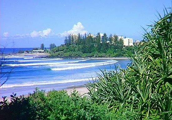 Oaks Gold Coast Calypso Plaza Suites Photo