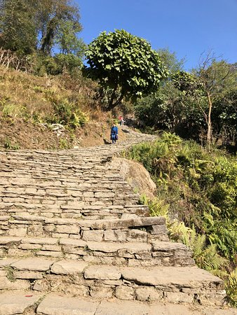 Stone steps, on the way to Ghandruk