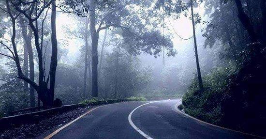 Wayanad District, India: Ghat Road - WAyANAD.