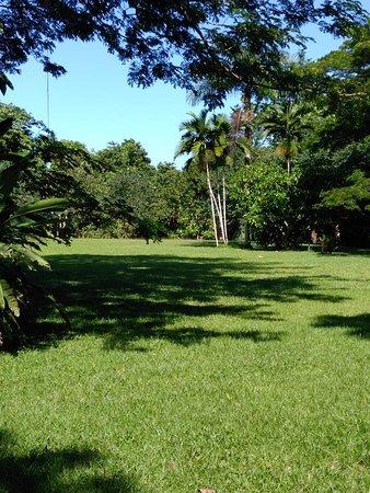 Portland Parish, Jamajka: The Lawn at Frenchman's Cove in Portland Jamaica