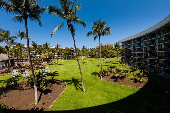 Hilton Waikoloa Village Updated 2019 Prices Reviews Photos