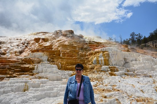 Novi Adventure Tours: Yellowstone Mammouth Hot Springs