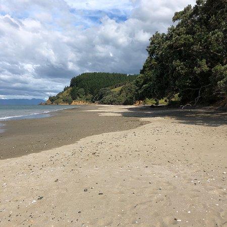 Tawhitokino Regional Park