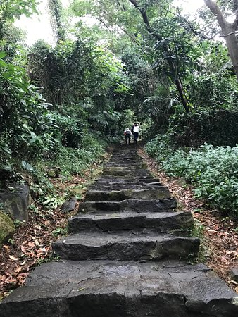 Jhongyishan Trail