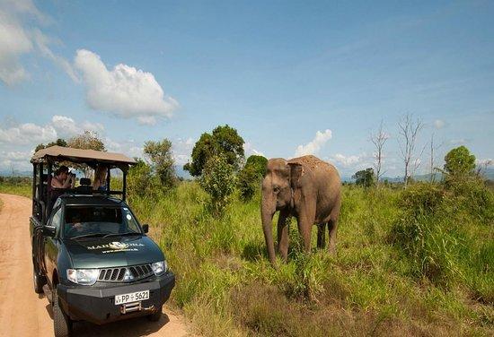 Touristico Lanka