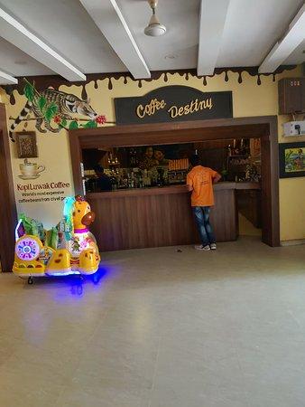 Coffee Museum照片